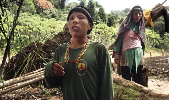 Sapanahua-tribe-468564